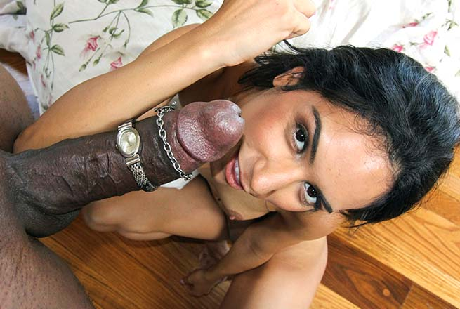 Black Latino Cock